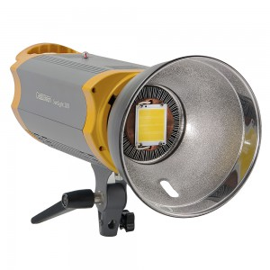 Студийный светодиодный осветитель GreenBean SunLight 100 LED BW