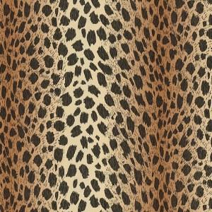 Интерьер фотостудии - Тигр Леопард
