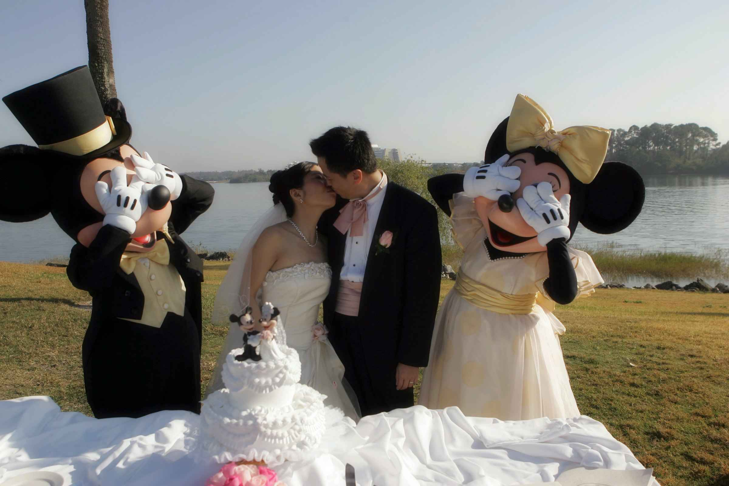 Ролики про весілля 20 фотография